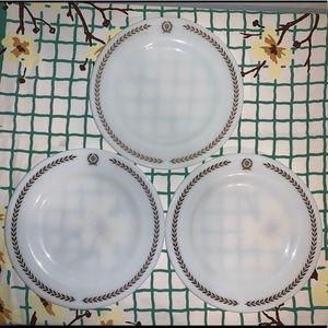 Vintage Pyrex Dinner Plates